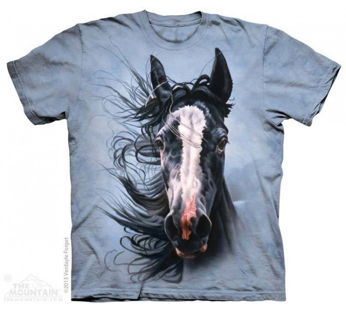 The Mountain Storm Chaser Horse T-Shirt (Lg, 2x)
