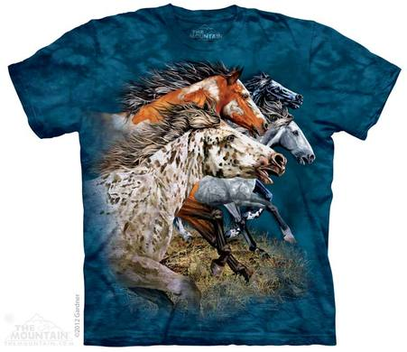 Find 13 Horses Shirt