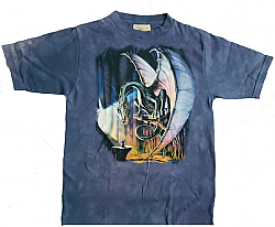 The Mountain Dragon & Wizard Youth Tee Shirt (Md, Lg)